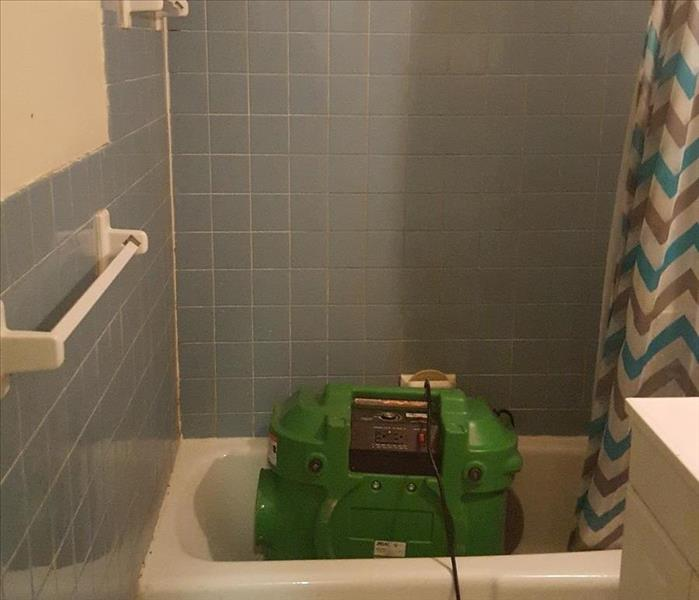 Mold Remediation in Bathroom After