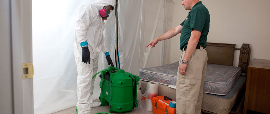 Manhattan, NY mold removal process